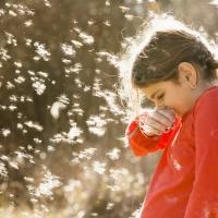 la alergia y usted
